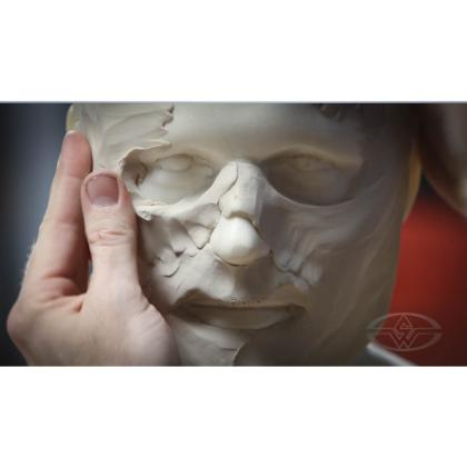 DVD Bruce D. Mitchell : How To Make A Mask - Wearable Dynamic Art Part 1