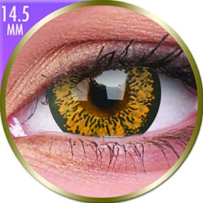 Lentilles Big Eyes 14,5mm - 1 mois - Baby Brown