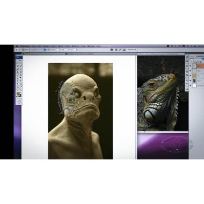 DVD Casey Love : Creature Design - Practical to Digital